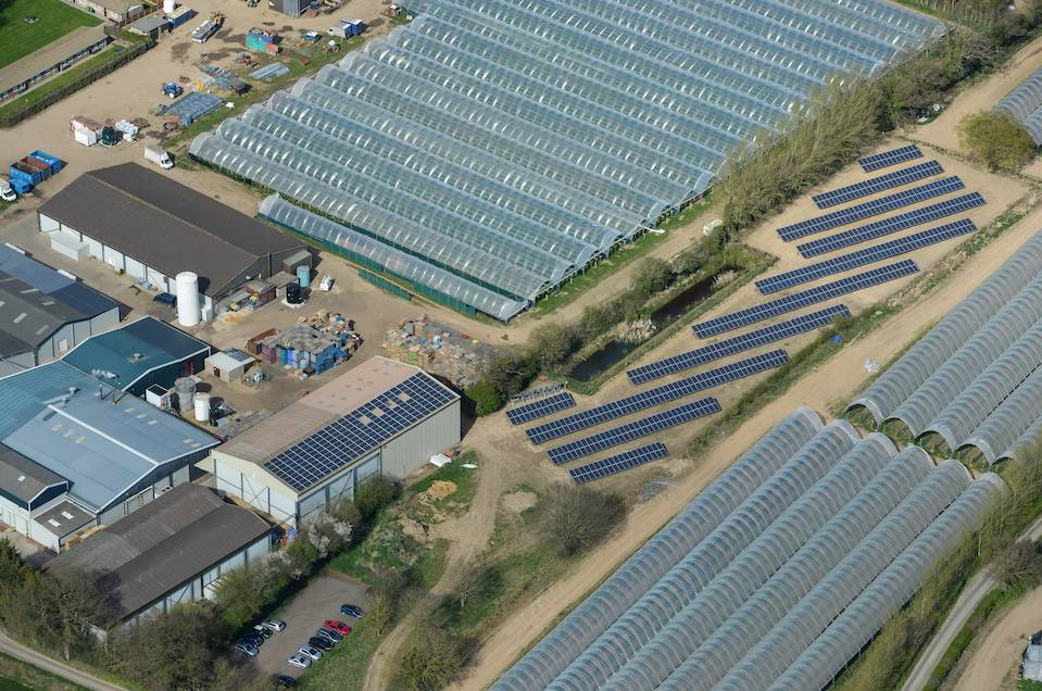 Fruit farm slashes 'significantly' higher bills with solar array