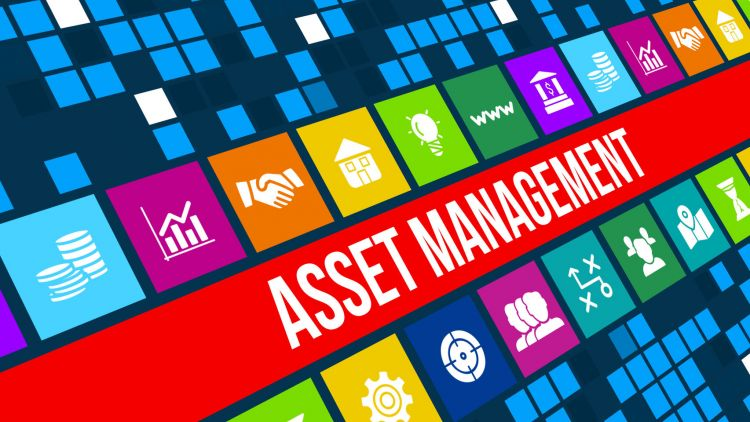 Asset life optimisation through asset management