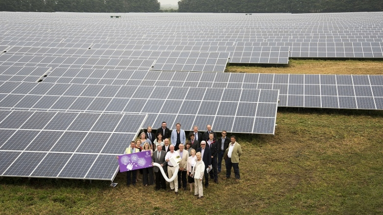 Local authority buys up 12.5MW solar farm with capital reserves