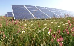 BSR takes control of UK's first community solar farm in latest O&M win