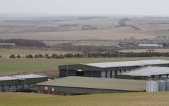 526kWp solar array helps Hertfordshire farm control energy bills