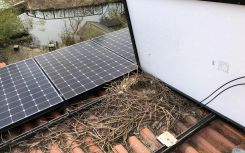 BirdBlocker protects rooftop solar systems against bird nesting hazards